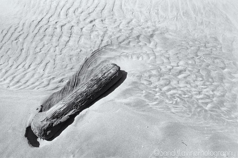 Drakes Beach Sand Sculpture