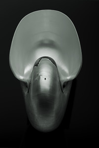 Hommage á Edward Weston V—Portrait of an Alien Lifeform (Akhenaten)
