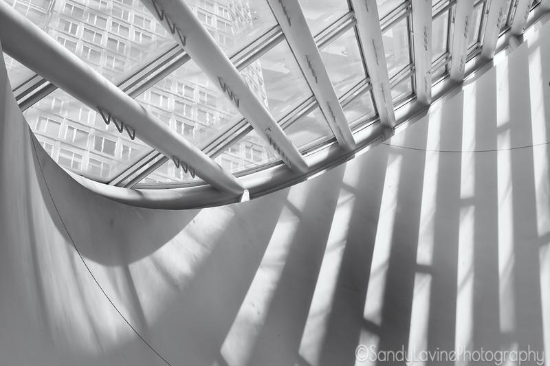 MOMA Reflections