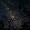 Big Bend National Park, Texas (April 2018)<br /> <br /> Darkness is scary.  I don't care who you are - when you cannot see you hand in front of your face, it is spooky.  It seems to be hard-wired in us.  Creepy trees and rustling in the forest just adds to it.