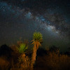 West Texas, near Marathon (April 2018)<br /> <br /> When I was bored with photographing in average light, I began seeking out more dramatic times to photograph.  I started photographing at night, and as part of that learned how to photograph the night sky.  After I got tired of photographing run-of-the-mill starry skies, I began going to Big Bend - one of the darkest places in the country - to capture the sky.  After a while, I got bored with that,and would only go on moonless nights with a clear view of the Milky Way.  <br /> <br /> On the last trip, I was bored with standard silhouetted foreground elements, so I lit them up.  I'm wondering what will come next.  I don't know, and I need to wait for boredom to take over.