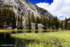 South Lake, Bishop Lakes, California, May 2015.