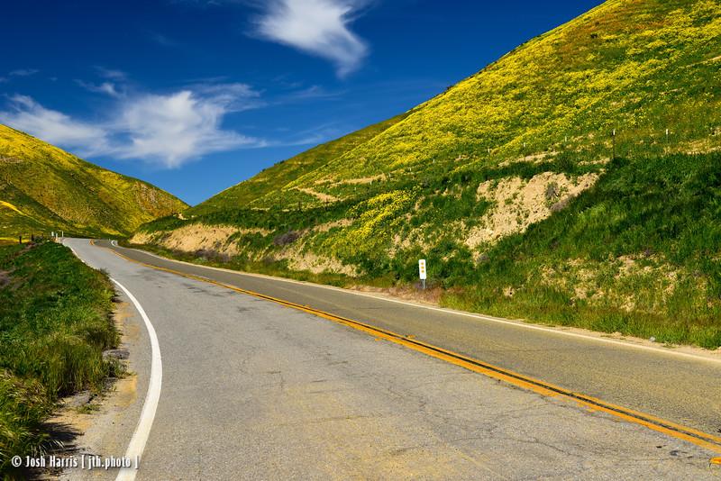 Highway 58, Carrizo Plain National Monument, April 2017.