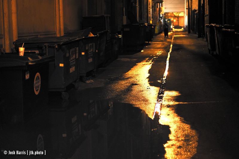 Alley of State Street, Chicago, August 2008.