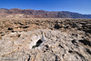Devil's Golf Course, Badwater, Death Valley, February 2013.