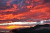 View from Saddle Peak Road, Malibu, November 2007.