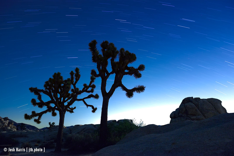 Joshua Tree National Park, September 2015.