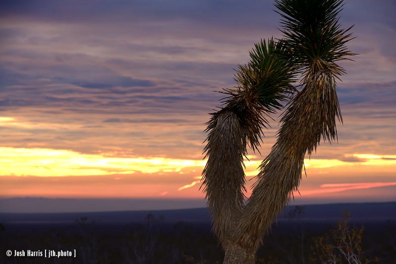 Highway 14, Mojave, California, January 2015.