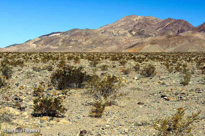 Eureka Road, Death Valley, November 2014.