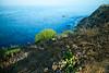 Point Vicente, Palos Verdes, September 2020.