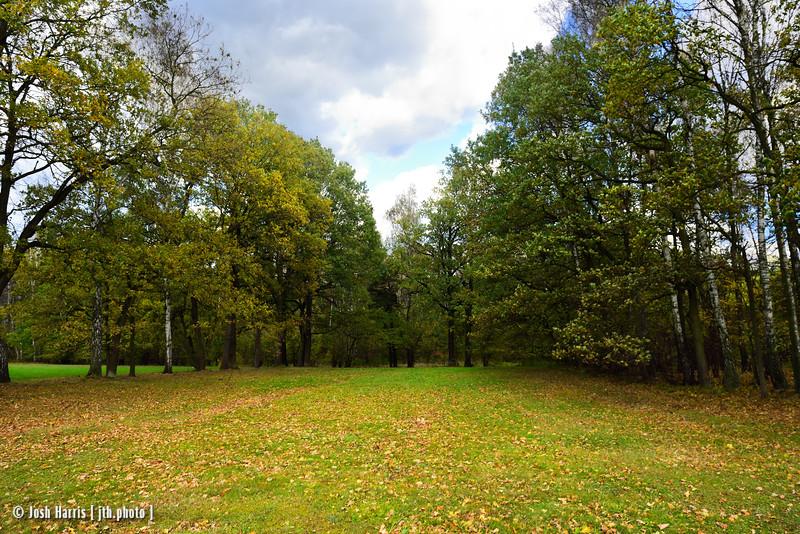 Open Field Where Corpses Were Burned, Northwest Perimeter, Auschwitz II-Birkenau, Poland, October 2018.