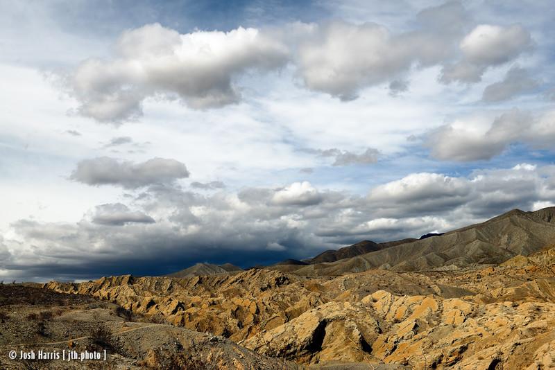 Anaza Borrega State Park, California, March 2014.