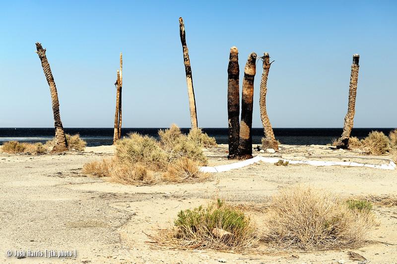 Salton City, Salton Sea, May 2013.