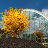 Chihuly Glass and Garden-Seattle Center