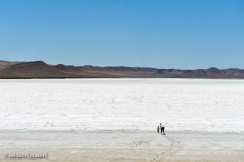 Soda Lake, Carrizo Plain National Monument, May 2012.