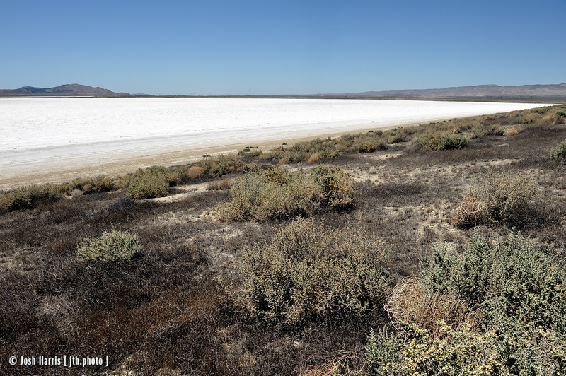Soda Lake, Carrizo Plain National Monument, May 2012.