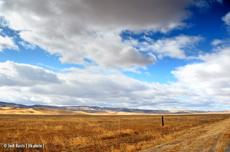 Soda Lake Road, Carrizo Plain National Monument, November 2008.