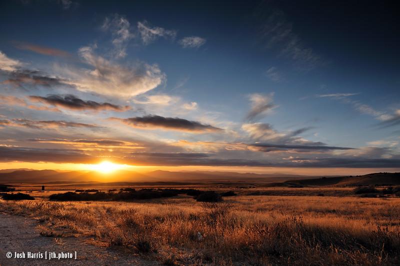 Seven Mile Road, Soda Lake, Carrizo Plain National Monument, November 2008.