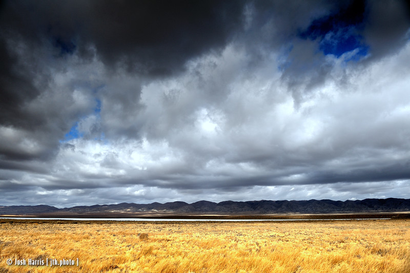 Soda Lake, Carrizo Plain National Monument, November 2008.