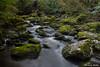 Mclean River
