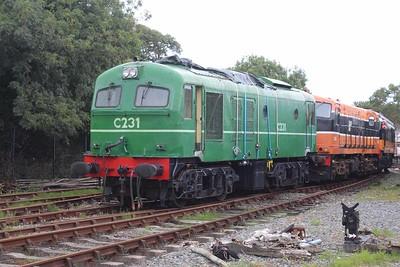 C231 at Downpatrick on 06.08.16.