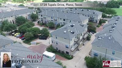 5728 Tupelo Drive, Plano, Texas