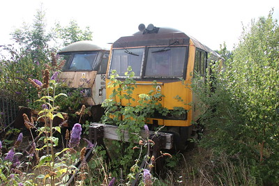 21 July 2018. Slowly being reclaimed by nature. What a criminal waste. 90025 and 60055 are seen disappearing from view at Crewe Electric Depot. 90025 has now been inactive for over fourteen and a half years whilst the tug has been silent for three months short of a decade.