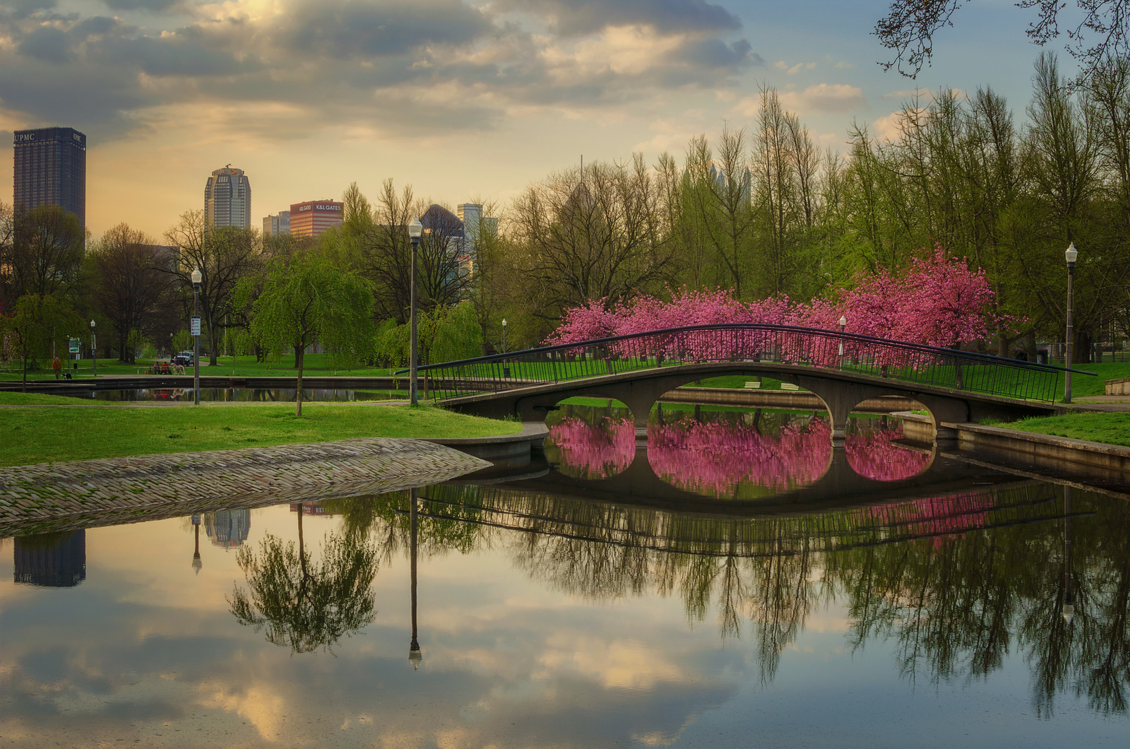 Spring Reflections