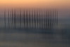 Ghostly Pilings<br /> (vertical swipe of camera)