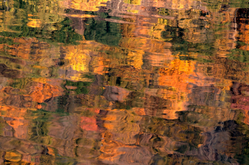 Delaware River Reflection (2)