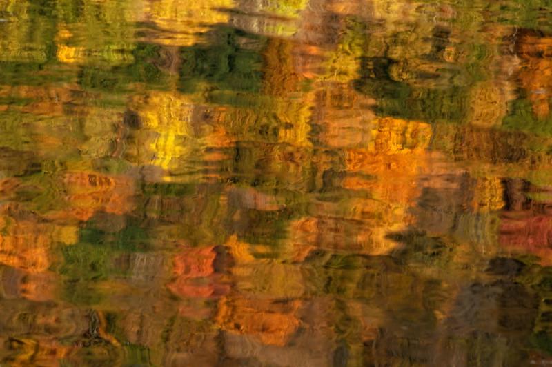 Delaware River Reflection