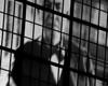 Andrew Carnegie Window Projection