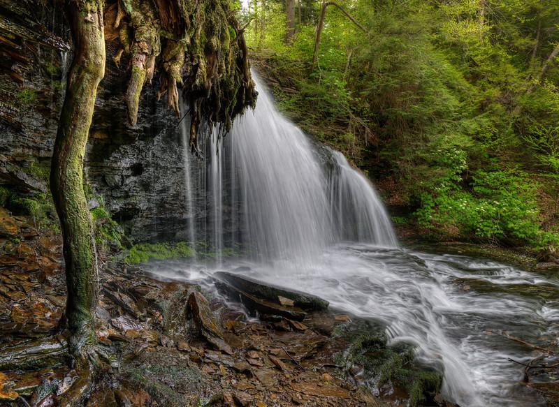 Mohawk Falls (17 ft)