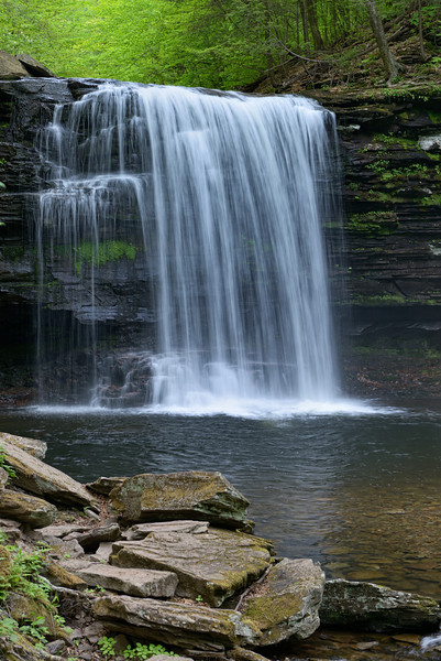 Harrison Wright Falls (27 ft)