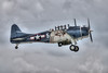 "DOUGLAS SBD-5 ""DAUNTLESS"""