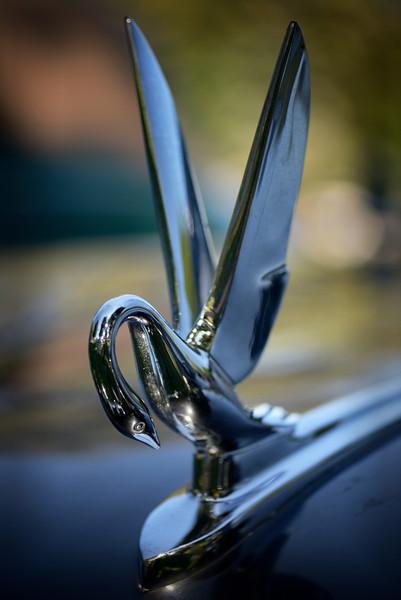1950s Packard Comorant Hood Ornament