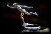 1929 Buick Hood Ornament