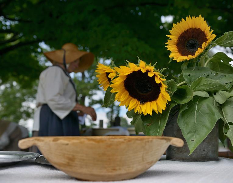 Sunflowers at Dinner