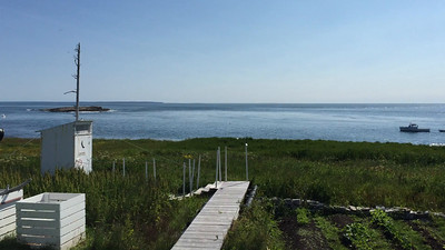 Video from islandMachias Seal Island