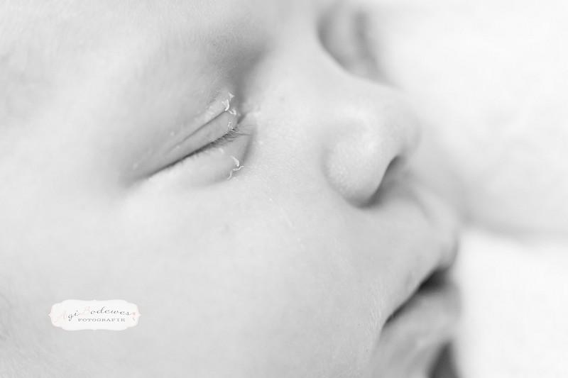 Puur newborn fotografie