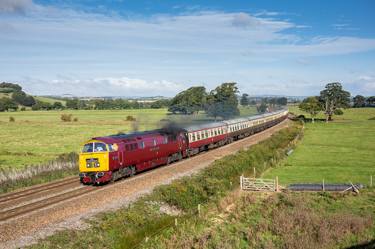 "170916  What a view...D1015 masquerading as D1071 ""Western Renown"" pass the gallery at Powderham with the 1Z59 0507 Tame Bridge Parkway to Penzance..MEGA"