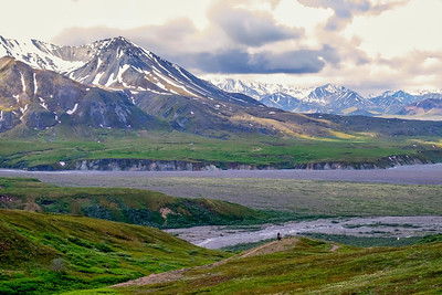 Highway Pass Panorama,  Denali National Park