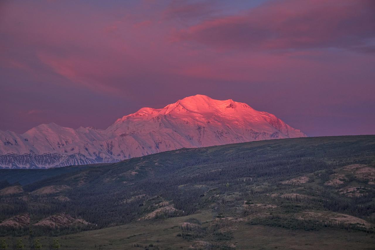 Mt. Denali Alpenglow, Denali National Park
