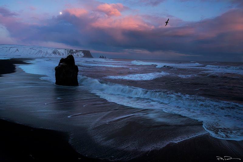 Remedy- Vik, Iceland