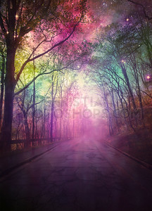 Night sky pathway