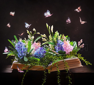 Open book and garden
