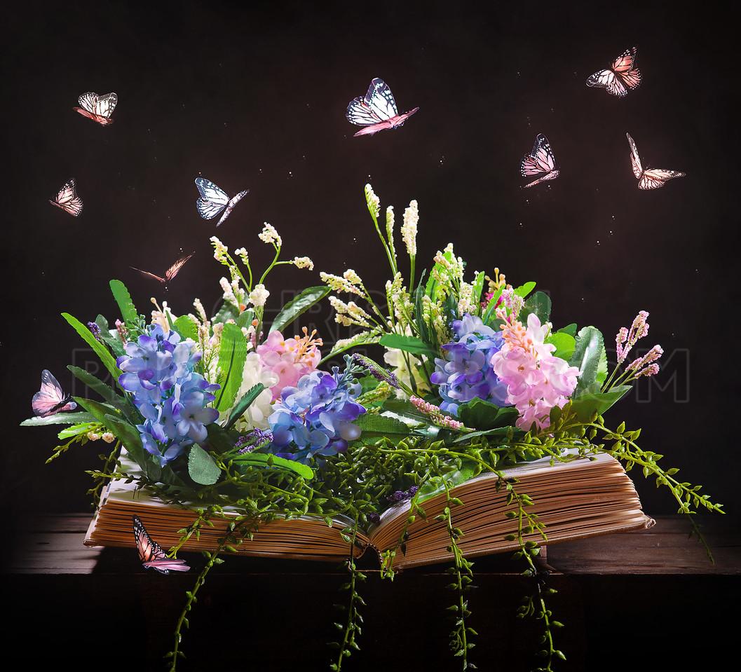 Open book and garden