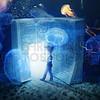 Finding Bible underwater