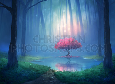 Cherry tree in the forest