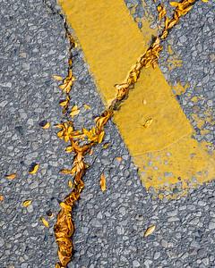 Yellow Lines